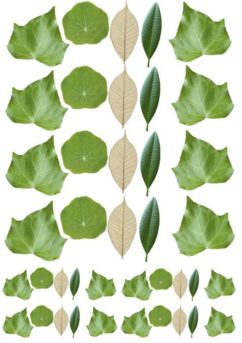 Streudeko Blätter aus Fondant
