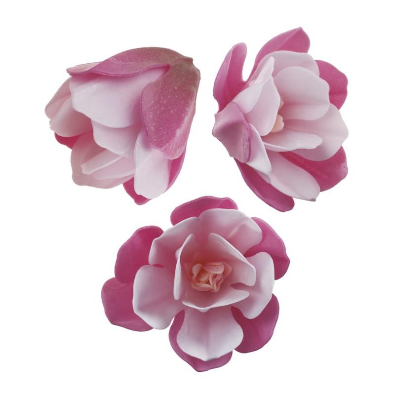 Blumen Magnolie Oblate 3 Stk.