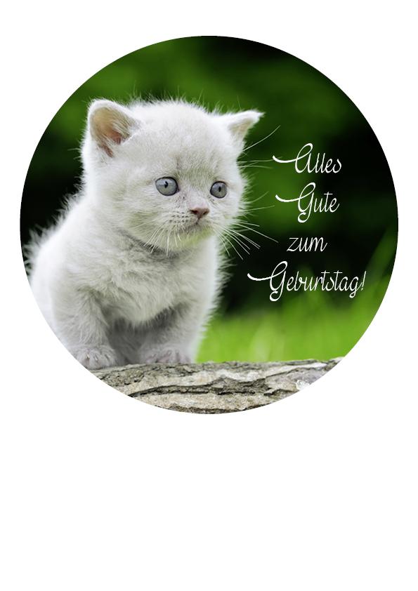"""Tortenaufleger Katze """"Alles Gute zum Geburtstag"""""""