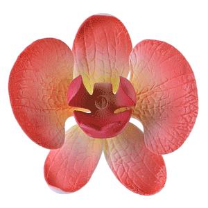 Orchidee Zuckerdeko rot - gelb